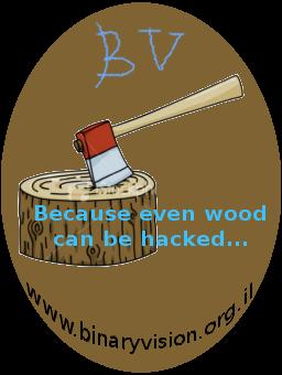 Binaryvision logo mockup